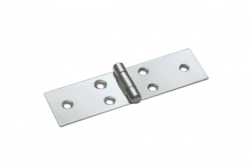 Stainless Steel long hinge with fixed pin - IBFM
